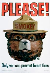 Please! Only You Can Prevent Forest Fires Poster